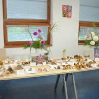Výstava hub a jiřin 9. 9. 2013