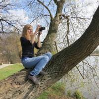 Fotografická soutěž Pražské stromy