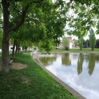 Rekonstrukce rybníčku Ohrada zahájena