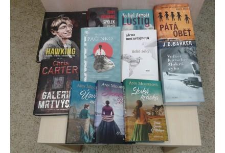 Nové knihy na odpočinek v horkém létě už jsou v knihovně