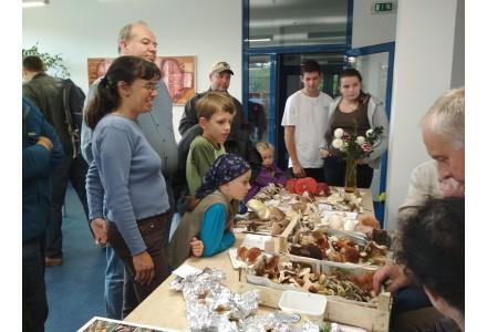 Jiřinky a houby 2017